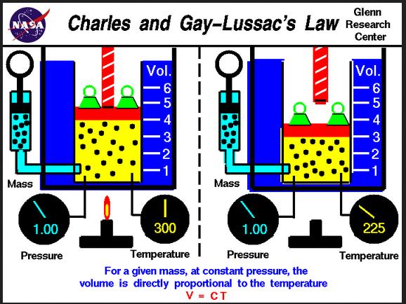 gay law 33